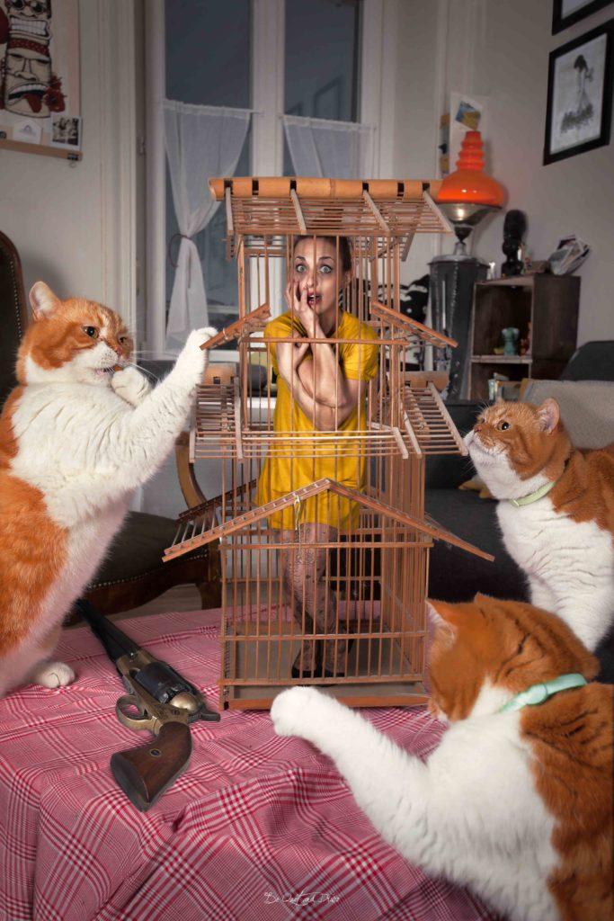 Jenny cage birds